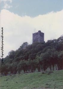 Dolwyddelan Castle (Wales) - 1991-06-03 #3