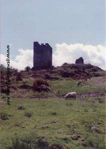 Dolwyddelan Castle (Wales) - 1991-06-03