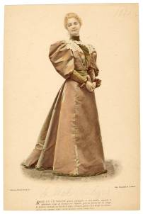 Fashion Plate 1893