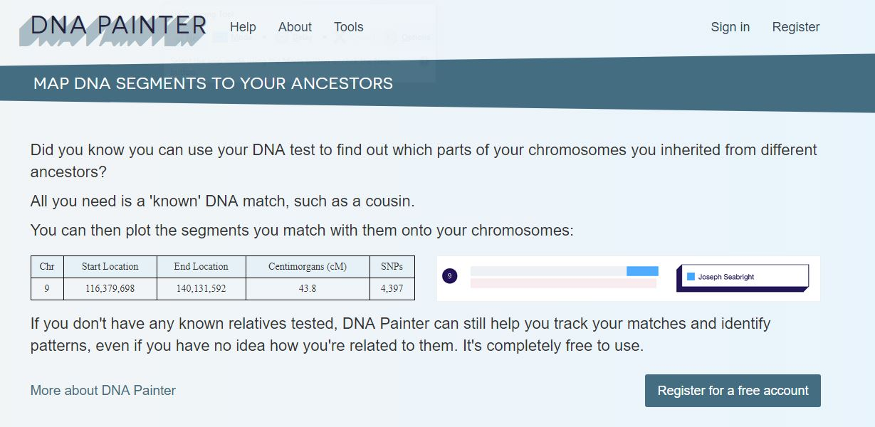 Down the DNA Rabbit Hole – DNA Painter | Genealogy Lady